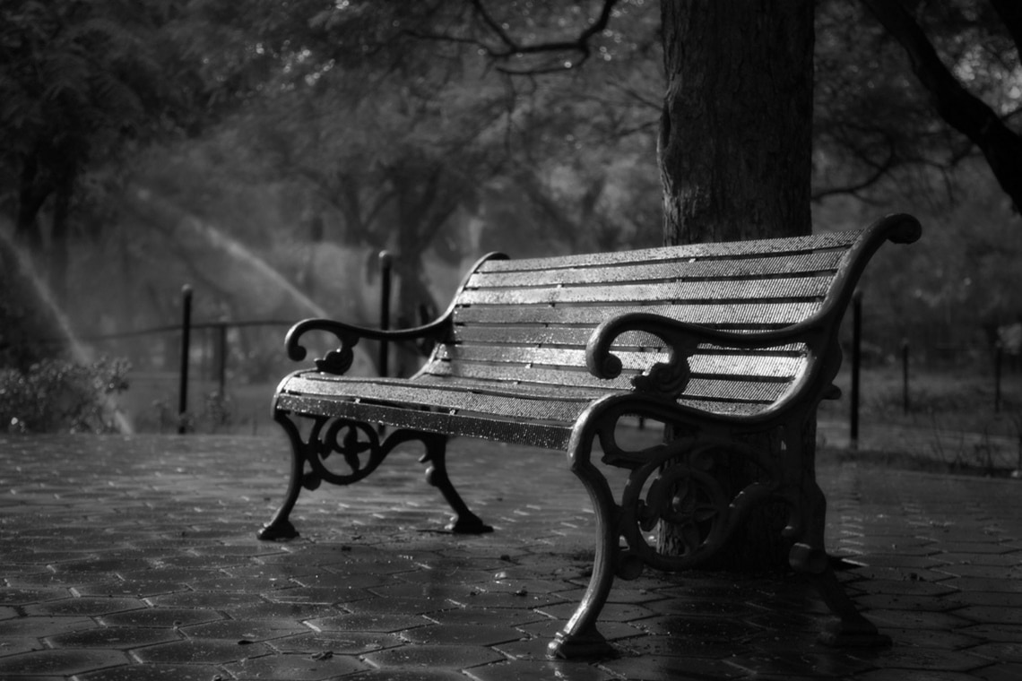 Bench in Park Relax