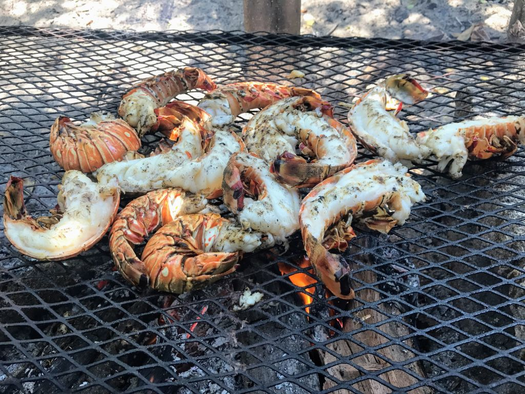 Fresh shrimp on the grill